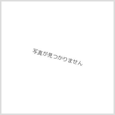 画像4: 猫珈 茶トラ(モカ)ドリップバッグ5ヶ入